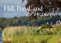 Hill-Pond-and-Preserve