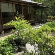 Japanese house and lush garden