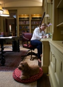 jeanne-blasberg-writing-the-nine-with-dog-brady-based-on-sacred-story-of-hannah-and-samuel