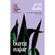 burnt_sugar_book_review_avni_doshi