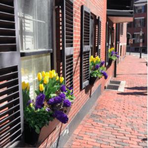 jeanne-blasberg-beacon-hill-boston-spring-returning-east-pandemic-road-trip